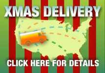 Christmas Shipping Policy
